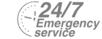 24/7 Emergency Service Pest Control in Hackney, Homerton, E9. Call Now! 020 8166 9746